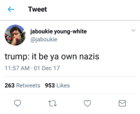 Blackpeopletwitter, News, and Trump: Tweet  jaboukie young-white  @jaboukie  trump: it be ya own nazis  11:57 AM-01 Dec 17  263 Retweets 953 Likes <p>The news got him flynn kinda betrayed rn (via /r/BlackPeopleTwitter)</p>