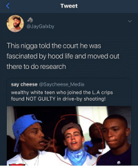 He ain't gon last @larnite • ➫➫➫ Follow @Staggering for more funny posts daily! • (Ignore: memes dank funny cats insta love me goals happy ligmaballs): Tweet  @JayGalxby  This nigga told the court he was  fascinated by hood life and moved out  there to do research  say cheese @Saycheese_Media  wealthy white teen who joined the L.A crips  found NOT GUILTY in drive-by shooting! He ain't gon last @larnite • ➫➫➫ Follow @Staggering for more funny posts daily! • (Ignore: memes dank funny cats insta love me goals happy ligmaballs)