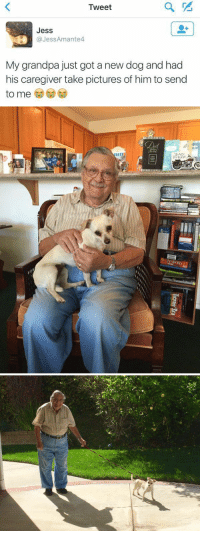 I'm crying this is too precious 😭😍 https://t.co/7tbFqqmsny: Tweet  Jess  aJessAmante4  My grandpa just got a new dog and had  his caregiver take pictures of him to send  to me  to me CDC) I'm crying this is too precious 😭😍 https://t.co/7tbFqqmsny