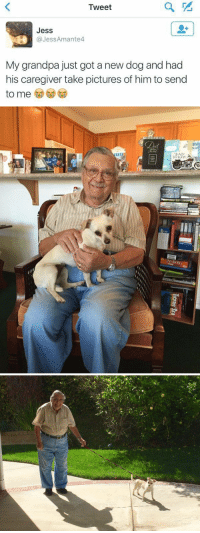 """I'm crying this is too precious 😭😍 https://t.co/OHJwH5PALR: Tweet  Jess  Jess Amante4  My grandpa just got a new dog and had  his caregiver take pictures of him to send  to me   """"DAP  h WEF  ICERS I'm crying this is too precious 😭😍 https://t.co/OHJwH5PALR"""