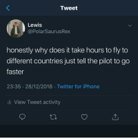 Iphone, Lmao, and Memes: Tweet  Lewis  @PolarSaurusRex  honestly why does it take hours to fly to  different countries just tell the pilot to go  faster  23:35 28/12/2018 Twitter for iPhone  li View Tweet activity Can't believe no one thought of this LMAO