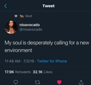 environment: Tweet  liked  nioavocado  @nioavocado  My soul is desperately calling for a new  environment  11:48 AM 7/3/19 Twitter for iPhone  17.9K Retweets 32.1K Likes