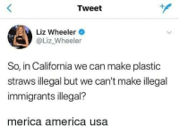 Illegal Immigrants: Tweet  Liz Wheeler  @Liz_Wheeler  So, in California we can make plastic  straws illegal but we can't make illegal  immigrants illegal?  merica america usa