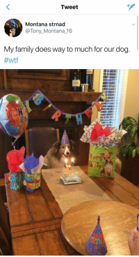 <p>I think they&rsquo;re doing just enough<br/></p>: Tweet  Montana strnad  @Tony_Montana_16  My family does way to much for our dog.  #Wtf   BIRTHD <p>I think they&rsquo;re doing just enough<br/></p>
