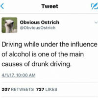 Obvious Ostrich: Tweet  Obvious Ostrich  @Obvious Ostrich  Driving while under the influence  of alcohol is one of the main  causes of drunk driving.  4/1/17, 10:00 AM  207 RETWEETS  737  LIKES