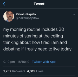 Meirl: Tweet  Pakalu Papito  @pakalupapitow  my morning routine includes 20  minutes of staring at the ceiling  thinking about how tired i am and  debating if i really need to live today  9:19 pm 18/10/19 Twitter Web App  1,757 Retweets 4,319 Likes Meirl