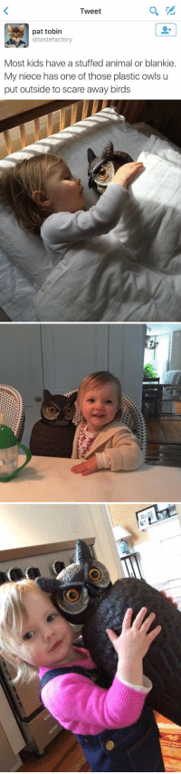 Memes, Scare, and Animal: Tweet  pat tobin  @tastefactory  Most kids have a stuffed animal or blankie.  My niece has one of those plastic owls u  put outside to scare away birds some happiness on your timeline today https://t.co/IpmIqkz5QI