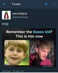 There: Tweet  pewdiepie  @pewdiepie  stop  Remember the  Kazoo kid  This is him now  3:33 pm 16 Dec 16 There