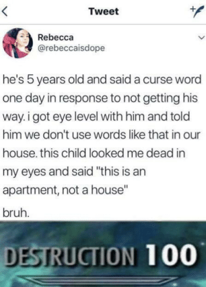 "Well played by MunaN15 MORE MEMES: Tweet  Rebecca  @rebeccaisdope  he's 5 years old and said a curse word  one day in response to not getting his  way. i got eye level with him and told  him we don't use words like that in our  house. this child looked me dead in  my eyes and said ""this is an  apartment, not a house""  bruh.  DESTRUCTION 100 Well played by MunaN15 MORE MEMES"