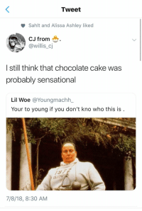 Sensational, Cake, and Chocolate: Tweet  Sahlt and Alissa Ashley liked  CJ from  @willis_cj  | still think that chocolate cake was  probably sensational  Lil Woe @Youngmachhー  Your to young if you don't kno who this is  7/8/18, 8:30 AM
