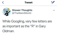 "shower: Tweet  Shower Thoughts  @TheWeirdWorld  While Googling, very few letters are  as important as the ""R"" in Gary  Oldman."