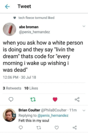 "Penis, White, and How: Tweet  tech fleece tormund liked  abe broman  @penis_hernandez  when you ask how a white person  is doing and they say ""livin the  dream"" thats code for ""every  morning i wake up wishingi  was dead""  12:06 PM 30 Jul 18  3 Retweets 10 Likes  ian Coulter @PhilaBCoulter 11m  Replying to @penis_hernandez  Felt this in my soul  Br ."