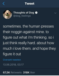 """Love, Twitter, and Figure It Out: Tweet  Thoughts of Dog C  @dog_feelings  sometimes. the human presses  their noggin against mine. to  figure out what i'm thinking. soi  just think really hard. about how  much i love them. and hope they  figure it out  Oversett tweeten  13.06.2018, 03.17  67,5K Retweets 318K liker <p>Delete all other Twitter accounts, this is the only one needed via /r/wholesomememes <a href=""""https://ift.tt/2NPPtpl"""">https://ift.tt/2NPPtpl</a></p>"""