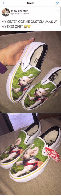 The Game, Vans, and Game: Tweet  ur fav dog mom  @ConnieDeziree  MY SISTER GOT ME CUSTOM VANS W  MY DOG ON IT <p>this has just changed the game.</p>