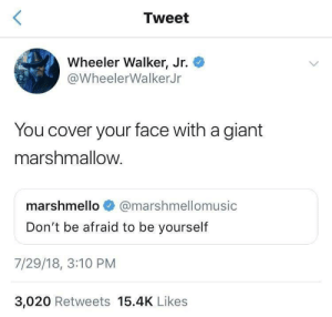 Dont Be: Tweet  Wheeler Walker, Jr.  @WheelerWalkerJr  You cover your face with a giant  marshmallow.  marshmello  @marshmellomusic  Don't be afraid to be yourself  7/29/18, 3:10 PM  3,020 Retweets 15.4K Likes
