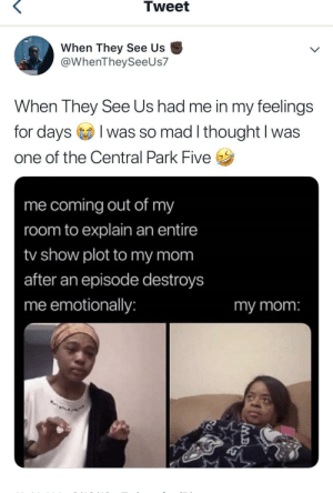 When They See Us 😩 by hopelesslyunhappy MORE MEMES: Tweet  When They See Us  @WhenTheySeeUs7  When They See Us had me in my feelings  for daysI  I was so mad I thought I was  one of the Central Park Five  me coming out of my  room to explain an entire  /show plot to my mom  after an episode destroys  me emotionally:  my mom:  MB When They See Us 😩 by hopelesslyunhappy MORE MEMES