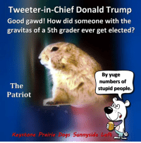 Tweeter-in-Chief Donald Trump demanded the Hamilton cast apologize to Pence, because they respectfully stated a request for unity.: Tweeter-in-Chief Donald Trump  Good gawd! How did someone with the  gravitas of a 5th grader ever get elected?  By yuge  numbers of  The  stupid people.  Patriot  Keystone Prairie Dogs Sunnyside Lefo Tweeter-in-Chief Donald Trump demanded the Hamilton cast apologize to Pence, because they respectfully stated a request for unity.