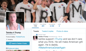 America, Andrew Bogut, and Bilbo: TWEETS FOLLOWING FOLLOWERS LIKES  110  291  2,1923  Tweets Tweets& replies Photos&videos  Twinks 4 Trump  @twinksfortrump  Pinned Tweet  Trump is daddy. #Twinks4Trump  Twinks 4 Trump @twinksfortrump Feb 25  twinks support #Trump and we don't care  what you think. He will make American gr8  again. He is daddy  # Make AmericaGreatAgain  America  PS Tweet to Twinks 4 Trump  O Photos and videos mr-krabs-libido:  c-bassmeow:  matthulksmash:      There is only one explanation for this!    No just the work of white gays lets be honest