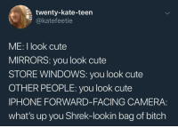Bitch, Cute, and Iphone: twenty-kate-teen  @katefeetie  ME: I look cute  MIRRORS: you look cute  STORE WINDOWS: you look cute  OTHER PEOPLE: you look cute  IPHONE FORWARD-FACING CAMERA:  what's up you Shrek-lookin bag of bitch awesome 23+ Memes You Should Not Miss Watching
