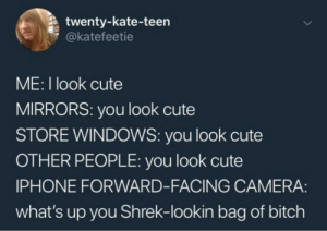 Bitch, Cute, and Iphone: twenty-kate-teen  @katefeetie  ME: I look cute  MIRRORS: you look cute  STORE WINDOWS: you look cute  OTHER PEOPLE: you look cute  IPHONE FORWARD-FACING CAMERA:  what's up you Shrek-lookin bag of bitch whitepeopletwitter:  Her profile pic must have been from iPhone forward facing camera.