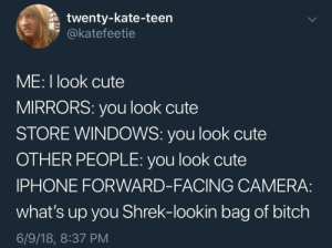 Epitome of first world problems: twenty-kate-teen  @katefeetie  ME: I look cute  MIRRORS: you look cute  STORE WINDOWS: you look cute  OTHER PEOPLE: you look cute  IPHONE FORWARD-FACING CAMERA:  what's up you Shrek-lookin bag of bitch  6/9/18, 8:37 PM Epitome of first world problems