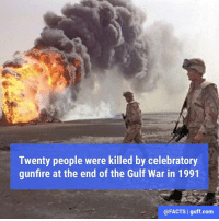 Facts, Memes, and Cake: Twenty people were killed by celebratory  gunfire at the end of the Gulf War in 1991  @FACTS I guff.com Proving once again, cake is always better than gunfire.