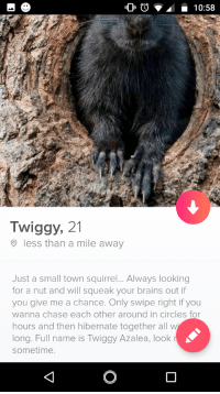 Brains, Chase, and Squirrel: Twiggy, 21  less than a mile away  Just a small town squirrel... Always looking  for a nut and will squeak your brains out if  you give me a chance. Only swipe right if you  wanna chase each other around in circles for  hours and then hibernate together all w  long. Full name is Twiggy Azalea, look  sometime