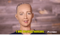 """Target, Tumblr, and Blog: Twillidestroy humans CNBC <p><a href=""""http://annushorribilis.tumblr.com/post/168227319287/sophia-is-coming-for-all-of-us-and-aint-even"""" class=""""tumblr_blog"""" target=""""_blank"""">annushorribilis</a>:</p><blockquote><p>Sophia is coming for all of us and ain't even tryin' to front about it</p></blockquote>"""