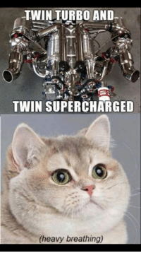 This is like an inhaler spray to an asthma patient. Car memes: TWIN TURBO AND  TWIN SUPERCHARGED  (heavy breathing) This is like an inhaler spray to an asthma patient. Car memes