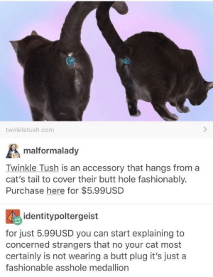 Cat accessories: twinkletush.com  malformalady  Twinkle Tush is an accessory that hangs from a  cat's tail to cover their butt hole fashionably.  Purchase here for $5.99USD  identitypoltergeist  for just 5.99USD you can start explaining to  concerned strangers that no your cat most  certainly is not wearing a butt plug it's just a  fashionable asshole medallion Cat accessories