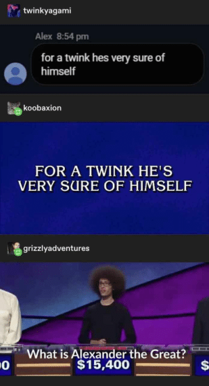 26+ Mindblowing Tumblr Posts That Will Make You Go ROFL - LADnow: twinkyagami  Alex 8:54 pm  for a twink hes very sure of  himself  koobaxion  FOR A TWINK HE'S  VERY SURE OF HIMSELF  grizzlyadventures  What is Alexander the Great?  $15,400  $ 26+ Mindblowing Tumblr Posts That Will Make You Go ROFL - LADnow
