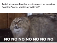 "Memes, Twitch, and Http: Twitch streamer: Enables text-to-speech for donators  Donator: ""Alexa, what is my address?""  NO NO NO NO NO NO NO <p>Alexa please don't via /r/memes <a href=""http://ift.tt/2o6v6YM"">http://ift.tt/2o6v6YM</a></p>"