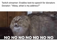 "Memes, Twitch, and Http: Twitch streamer: Enables text-to-speech for donators  Donator: ""Alexa, what is my address?""  NO NO NO NO NO NO NO Alexa, find me a hiding spot via /r/memes http://bit.ly/2C0ioSq"