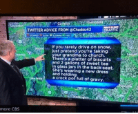 merica america usa: TWITTER ADVICE FROM @Chadsu42  TRAFFIC  lIf you rarely drive on snow,  just pretend you're taking  our grandma to church.  There's a platter of biscuits  and 2 gallons of sweet tea  in glass jars in the back seat.  She's wearing a new dress  and holding  a crock pot full of gravy.  more CBS merica america usa