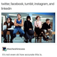 It's too true: twitter, facebook, tumblr, instagram, and  linkedin  thecheshirecass  It's not even ok how accurate this is. It's too true