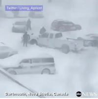 Driving, Memes, and News: Twitter Living Apricot  Dartunoutit, Nova Scotia, Caurada  NEWS Not what you want to see when you're driving through a snowstorm: A snow plow got stuck during Canadian blizzard that shut down much of NovaScotia, leaving thousands without power, and closing highways. 👀❄️ @abcnews WSHH