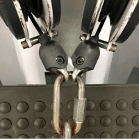 Birds, Faces-In-Things, and Worm: Two birds fighting for a worm https://t.co/KkEAcIAzBp