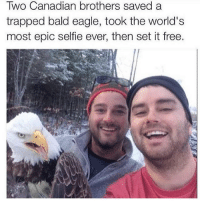 Funny, Redneck, and Trap: Two Canadian brothers saved a  trapped bald eagle, took the world's  most epic selfie ever, then set it free. Double Tap if you think it's epic!! Tag a Friend Below & Follow @the.redneck for more!