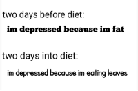 Im Fat: two days before diet:  im depressed because im fat  two days into diet:  im depressed because im eating leaves