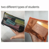 Funny, Memes, and Different: two different types of students SarcasmOnly