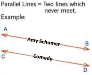 Amy Schumer, Funny, and Memes: Two lines which  never meet.  Parallel Lines  Example:  Amy Schumer  Comedy Haha, very funny, haha. via /r/memes https://ift.tt/2FCrhGS