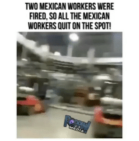 Memes, Mexican, and All The: TWO MEXICAN WORKERS WERE  FIRED, SO ALL THE MEXICAN  WORKERS QUIT ON THE SPOT! Thoughts on this ?