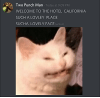 California, Hotel, and Today: Two Punch Man  Today at 9:09 PM  WELCOME TO THE HOTEL CALIFORNIA  SUCH A LOVLEY PLACE  SUCHA LOVELY FACE (edited)