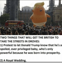 royal wedding: TWO THINGS THAT WILL GET THE BRITISH TO  TAKE THE STREETS IN DROVES:  1) Protest to let Donald Trump know that he's a  spoiled, over privileged baby, who's only  powerful because he was born into prosperity.  2) A Royal Wedding