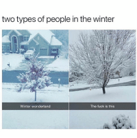 Memes, Winter, and Fuck: two types of people in the winter  Winter wonderland  The fuck is this 🤣Which one are you?