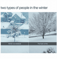"""Two types of people in the winter: 'Winter wonderland' vs 'The f--- is this'."" #winter #quotes #winterquotes #wintermemes #wintersolstice #solstice Follow us on Pinterest: www.pinterest.com/yourtango: two types of people in the winter  Winter wonderland  The fuck is this ""Two types of people in the winter: 'Winter wonderland' vs 'The f--- is this'."" #winter #quotes #winterquotes #wintermemes #wintersolstice #solstice Follow us on Pinterest: www.pinterest.com/yourtango"