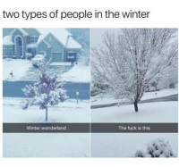 Winter, Fuck, and Wonderland: two types of people in the winter  Winter wonderland  The fuck is this .