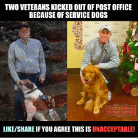 "Memes, Post Office, and Poland: TWO VETERANSKICKED OUTOF POSTOFFICE  BECAUSE OF SERVICE DOGS  VETERANS  CO  IRST  LIKE/SHARE IF YOU AGREE THIS IS UNACCEPTABLE! Kansas City post office apologizes after two veterans with service dogs were asked to leave a Kansas City post office location because they have service dogs. One veteran, who asked to not be named, was unable to pick up his package on Tuesday at the location inside Union Station. The employees told him he needed a tag on his dog or documentation to prove he needed the animal. He left without retrieving his package. ""This is a service animal, this is not a pet,"" he said in a video he took of the incident. On Wednesday, fellow veteran and friend Michael Poland experienced the same incident. ""This is wrong, this is so wrong,"" Poland said. ""And people need to know."" Poland came to the post office to mail a letter, but when he got to the desk, he was asked to leave. ""I tried to explain the ADA laws to her and it made no difference, she asked me to leave,"" he said. What's wrong with the staff of this rotten post office? Why our veterans have to suffer because of such idiots? They should have known that customers with service dogs are allowed inside without showing any proof. I think they should be immediately fired. ""I was very hurt. I served my country proudly,"" Poland said. ""I have issues. I have PTSD. I have a dog that helps me get out and do things, and then when I confront somebody like this, it's hard, its very hard."" Disgraceful! veteranscomefirst veterans_us Veterans Usveterans veteransUSA SupportVeterans Politics USA America Patriots Gratitude HonorVets thankvets supportourtroops semperfi USMC USCG USAF Navy Army military godblessourmilitary soldier holdthegovernmentaccountable RememberEveryoneDeployed Usflag StarsandStripes"