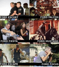 Memes, Focus, and Ford: tx  FORD ESCORT  FORD FALCON  FORD FIESTA  FORD MUSTANG  FORD ESCAPE  FORD FOCUS