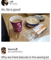 Life, Memes, and Snapchat: @Txyyb  Ah, life is good!  Shehzil,  @YungPakistani  Why are there biscuits in the sewing kit Snapchat: DankMemesGang